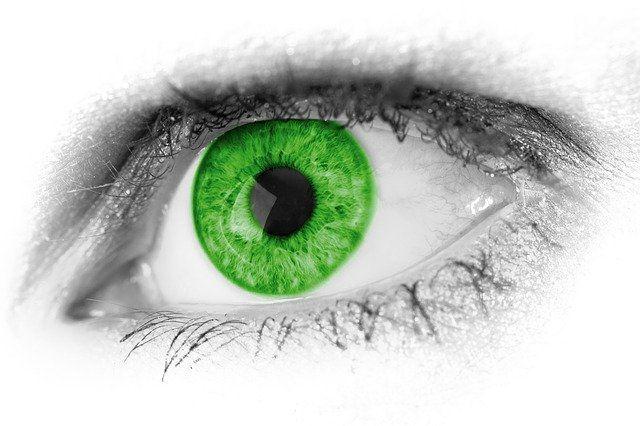 Aloe vera szemre